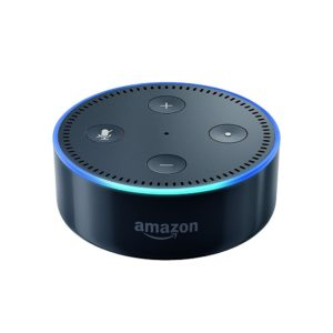 Learn to use the Amazon Echo for business